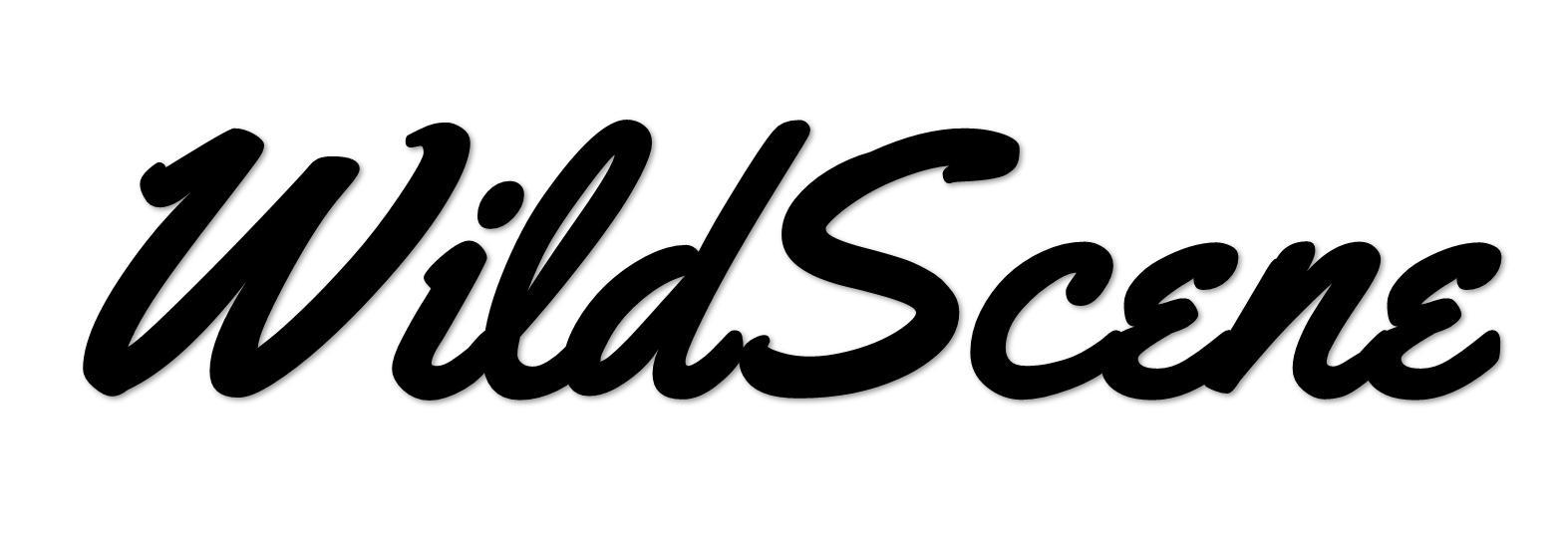 Wild Scene|Wild Scene公式オンラインショップ Wild Sceneではオリジナルのメタルジグ「Wild Scene(ワイルドシーン)」をはじめ、当店こだわりのソルトルアーを多数取り扱っております!ルアーロストやキャストミス・根がかりが気になり狙えなかったポイントも大胆に攻め大物狙いを可能に!週末アングラーのお財布に優しいコストパフォーマンスでご提供しております!